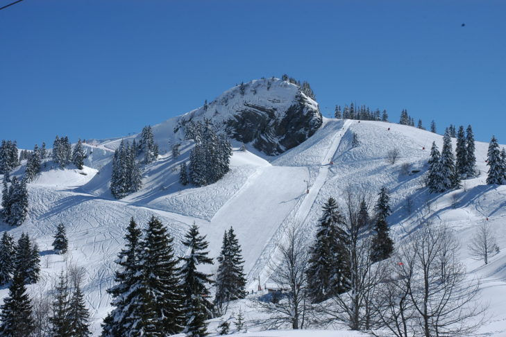 A perfect combination of pistes and trees.