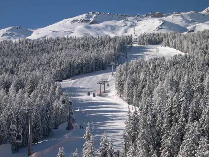 Romantic forest runs in the Santa Caterina Valfurva ski area.