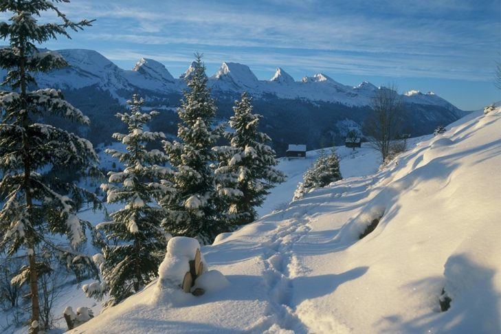 Snow-covered landscapes in St. Gallen invite you to take winter walks.