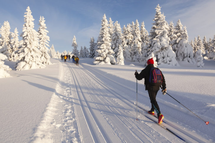 Cross-country skier in a heavily snow-covered landscape.
